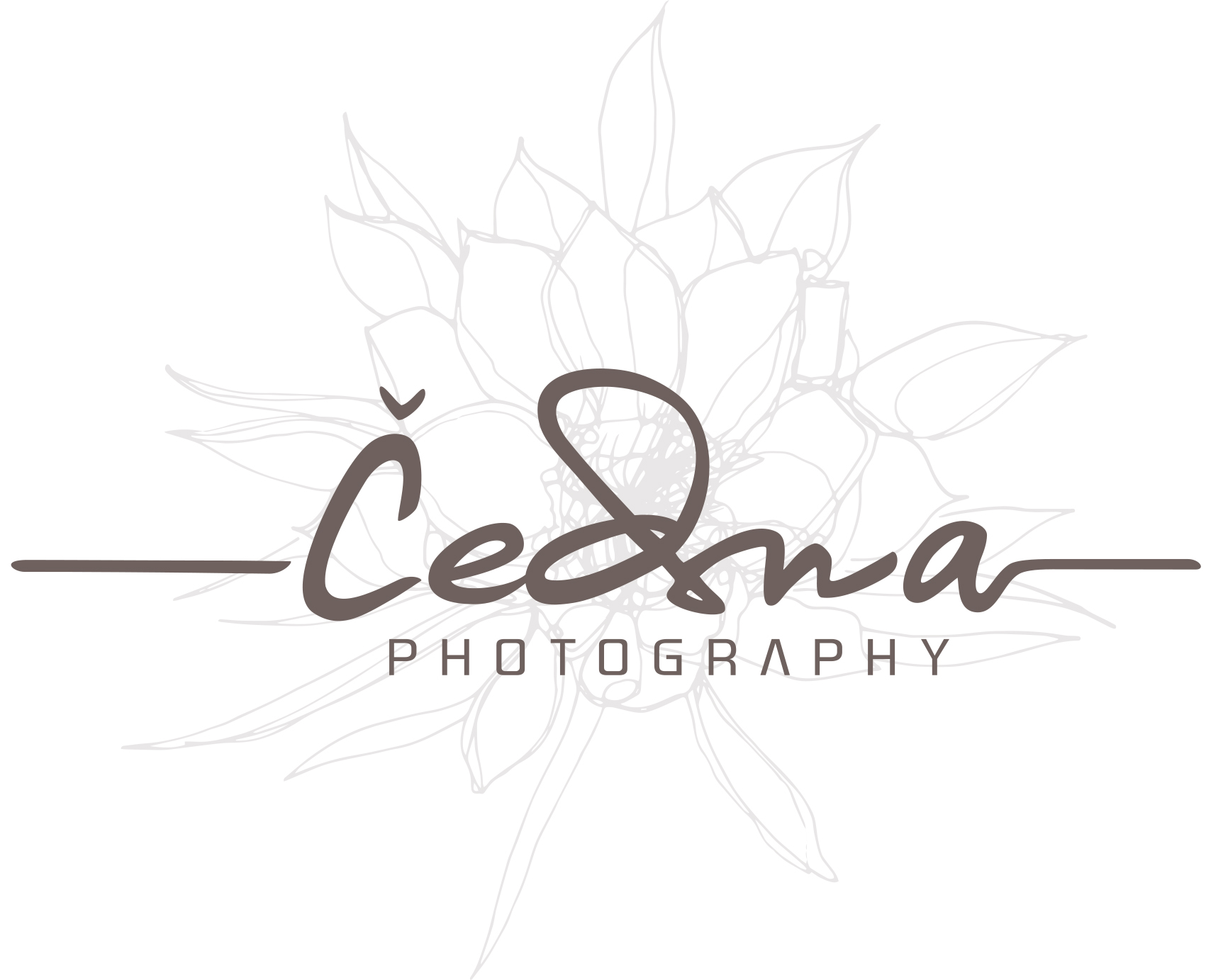 Cedna Photography